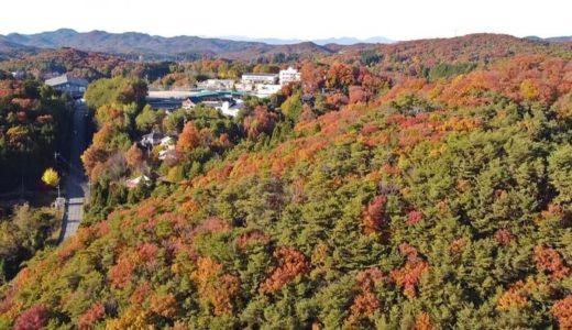 神石高原町の紅葉がすごかった